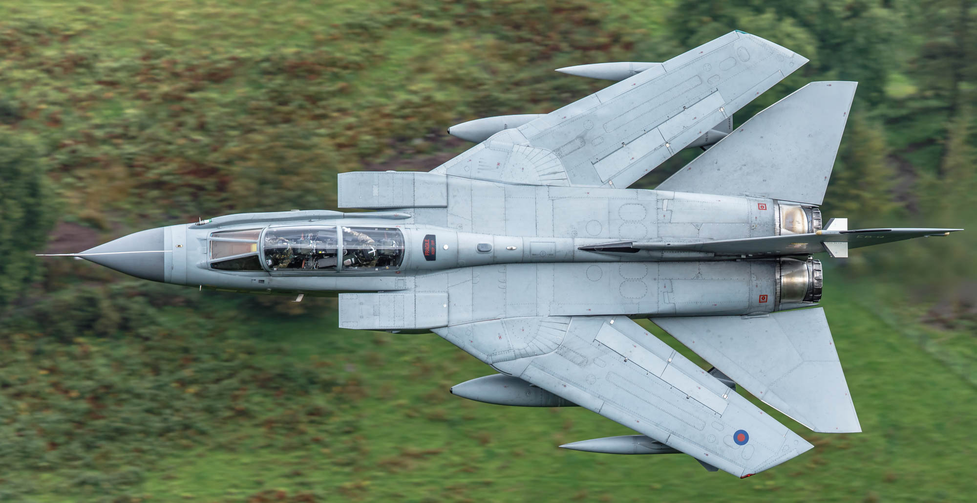 Aviation Photography - 41 Squadron RAF